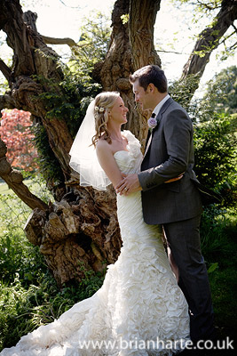 wedding couple under tree